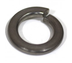 Stainless Steel : SUS 304 Ring Per (Spring Washer)