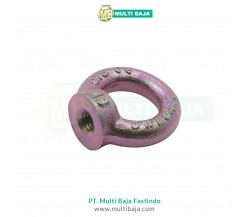 Besi Eye Nut DIN582
