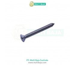 Stainless Steel : SUS 304 FH Tapping Screw DIN7982