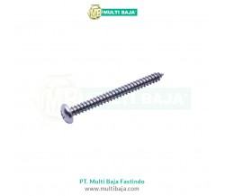 Stainless Steel : SUS 304 PH Tapping Screw DIN7981
