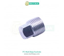 Stainless Steel : SUS 304 Square Pressure Plug DIN906